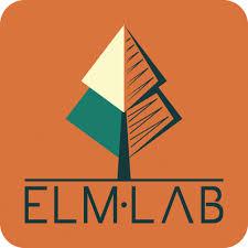 elmlab square colour logo